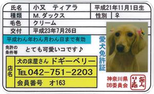 2011_0726_1.jpg